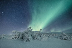 Aurora borealis in Iceland Stock Photography