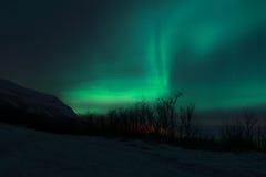Aurora Borealis - Lapland Arkivfoto