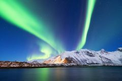 Aurora borealis on the Lofoten islands, Norway. Green northern lights above mountains. Night sky with polar lights. Night winter landscape with aurora and royalty free stock photo