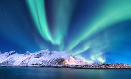 Aurora borealis on the Lofoten islands, Norway. Green northern lights above mountains and ocean shore. Night winter landscape with