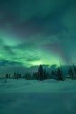 Aurora borealis (lumières du nord) forêt en Finlande, Laponie Image libre de droits