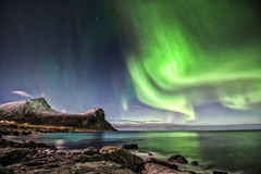 Aurora Borealis in Myrland Stock Foto