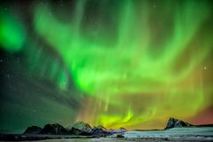 Aurora Borealis on Myrland beach. Aurora Borealis reflected in the sea on Myrland beach, Lofoten, Norway stock image