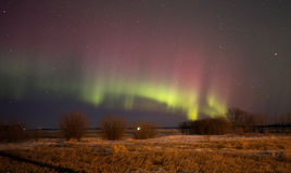 Aurora borealis in night sky Royalty Free Stock Photography
