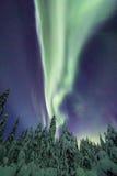 Aurora borealis (Noordelijke Lichten) het bos in van Finland, Lapland Stock Afbeelding