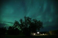 Aurora Borealis nordliga ljus, blått, Island 3 royaltyfri bild