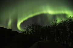 Aurora Borealis nordliga ljus, gräsplan, Island 1 arkivfoton
