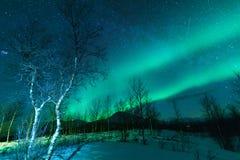 Aurora Borealis Northen tänder fenomen royaltyfria bilder