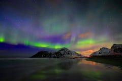 Aurora Borealis Northern-lichten De Eilanden van Lofoten, Noorwegen royalty-vrije stock foto's