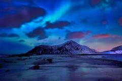 Aurora Borealis Northern-lichten De Eilanden van Lofoten, Noorwegen royalty-vrije stock afbeelding