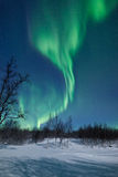 Aurora Borealis (Northern lights). High resolution image of Aurora Borealis natural pneumonia Royalty Free Stock Photos