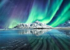Aurora Borealis, Northern Lights Above on snowy mountain in Skagsanden Beach at Lofoten Islands