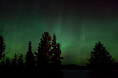 Aurora Borealis (Northern Lights) display. Aurora Borealis display and lots of stars in clear night sky, image taken at the shore of Lake Laberge, Yukon Stock Photography