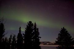 Aurora Borealis (Northern Lights) display. Aurora Borealis display and lots of stars in clear night sky, image taken at the shore of Lake Laberge, Yukon Royalty Free Stock Photos