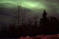 Aurora borealis. Northern Lights in Fairbanks Stock Photography