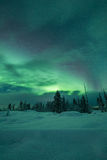 Aurora borealis (Northern Lights) in Finland, lapland forest Royalty Free Stock Image