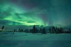 Aurora borealis (Northern Lights) in Finland, lapland forest Stock Photography