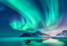 Aurora borealis. Northern lights in Lofoten islands, Norway. Sky with polar lights and stars. Night winter landscape with aurora, sea with sky reflection royalty free stock image