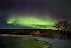 Aurora Borealis Northern Lights Royalty Free Stock Photo