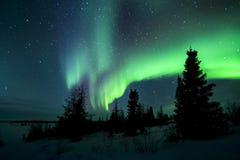 Aurora Borealis ovanför tundra arkivbild