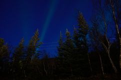 Aurora borealis over dark autumn forest. At night Stock Photos