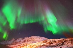 Aurora Borealis Over Ersfjorden, Tromso, Norvège Images stock