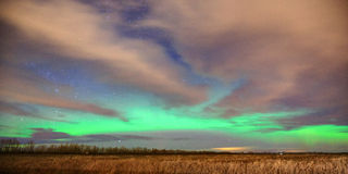 Aurora Borealis Over Farm Field Arkivbild