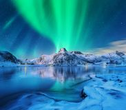 Aurora borealis over snowy mountains, frozen sea coast. And reflection in water in Lofoten islands, Norway. Northern lights. Winter landscape with polar lights royalty free stock photography