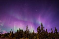 Aurora Borealis over Yellowknife, NT Stock Photos