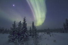 Aurora Borealis Raattama, 2014 02 21 - 09 Royaltyfri Fotografi