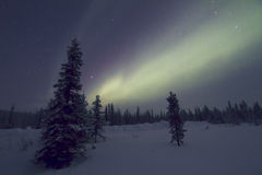 Aurora Borealis Raattama, 2014 02 21 - 20 Royaltyfri Bild