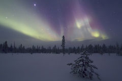Aurora Borealis, Raattama, 2014 02 21 - 23 Royalty-vrije Stock Afbeeldingen