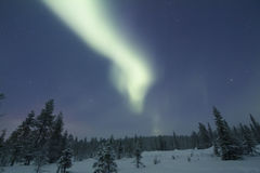 Aurora Borealis, Raattama, 2014 02 21 - 27 Photos stock