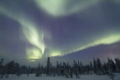 Aurora Borealis, Raattama, 2014 02 21 - 30 Photo stock