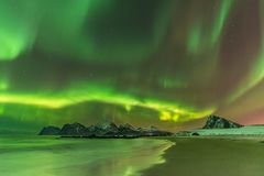 Aurora Borealis reflected in the sea on Myrland beach. Lofoten, Norway royalty free stock photos