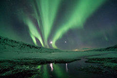 Aurora Borealis reflecting on pond Stock Image