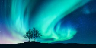 Aurora borealis and silhouette of the trees on the hill. Aurora. Northern lights. Sky with stars and green polar lights. Night landscape with bright aurora royalty free stock image