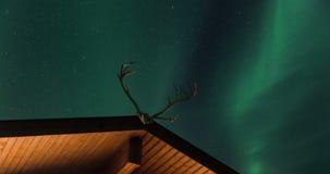 Aurora borealis sopra la cabina con i corni della renna video d archivio