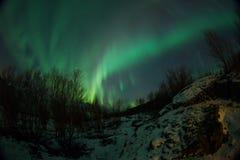 Aurora borealis sopra Tromso Immagini Stock