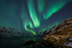 Aurora borealis sopra Tromso Fotografie Stock Libere da Diritti