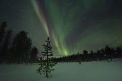 Aurora borealis spectaculaire (lumières du nord) Image stock