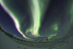 Aurora Borealis - Spitsbergen Stock Image