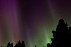 Aurora borealis northern lights. Aurora borealis and stars in Finland Stock Images