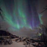 Aurora Borealis verde colorido surpreendente igualmente sabe como a aurora boreal no céu noturno sobre Lofoten ajardina, Noruega, foto de stock
