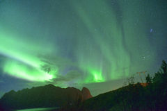 Aurora Borealis (northern lights) from Lofoten, Norway Royalty Free Stock Photo