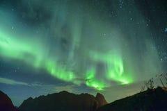 Aurora Borealis y x28; lights& septentrional x29; de Lofoten, Noruega Imagen de archivo