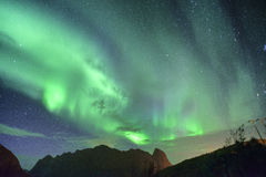 Aurora Borealis y x28; lights& septentrional x29; de Lofoten, Noruega Foto de archivo