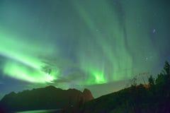 Aurora Borealis y x28; lights& septentrional x29; de Lofoten, Noruega Foto de archivo libre de regalías