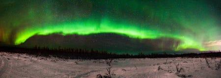 Aurora BorealisNorthern Lights Panorama från Fairbanks Alaska arkivbilder