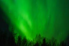 Aurora che fuma il cielo Fotografie Stock